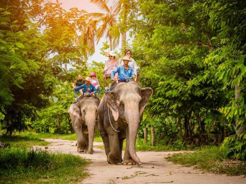 https://resim.gezinomi.com/assets/bangkok-pattaya-mahan-havayollari-ile-13251--10-04.02.2019162738-b1.jpg