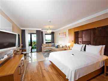 Hilton Basic Room