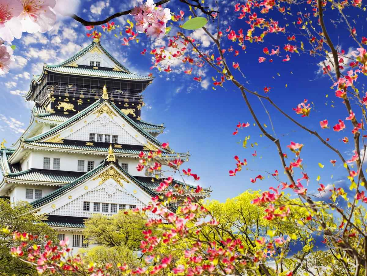 Страна япония в картинках