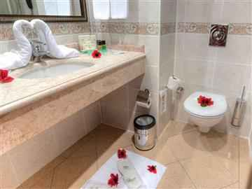 Balayı Kara Manzaralı Standart Oda Banyo
