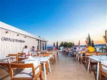Carpaccio Restaurant